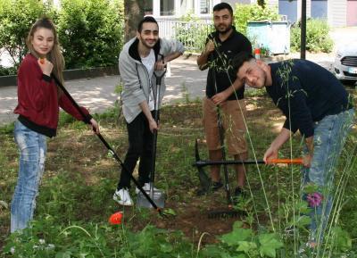 Blühwiesen statt Rasen - Internationale Förderklasse sorgt für mehr Grün am Berufskolleg Lübbecke
